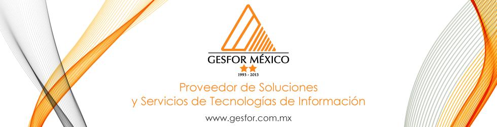 Banner de la empresa Gesfor México