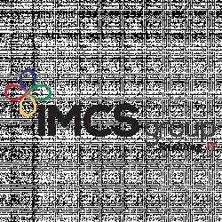 Logo de IMCS GROUP