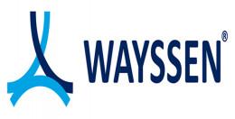 Grupo WAYSSEN de Mexico