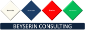 Beyserin Consulting